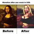 Monalisa after a week in the US.jpg