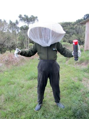 DIY wasp suit.jpg