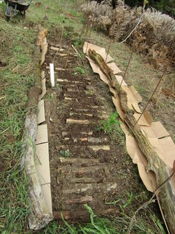 Garden bed burried wood.jpg