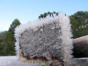Frosty morning on the land - ice crystals.jpg