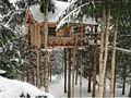 Tree house in the snow.jpg