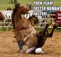 Faster human, faster!.png