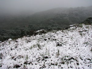 The hill in the snow 2.jpg
