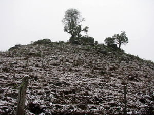 The hill in the snow 1.jpg