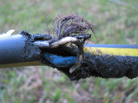 Damaged power cable.jpg
