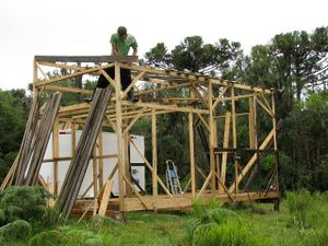 House - first roof frame.jpg